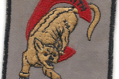 gallery_patch_3611 C Squadron.jpg